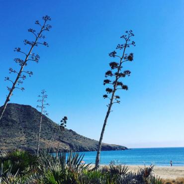 playa-genoveses-almeria