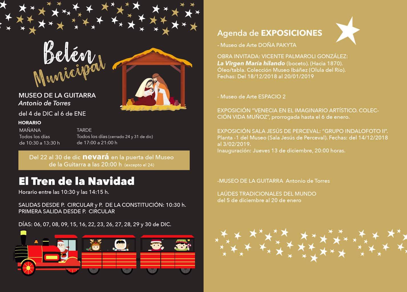 Programac-Navidad-Reyes-2018-2019-Almeria-14