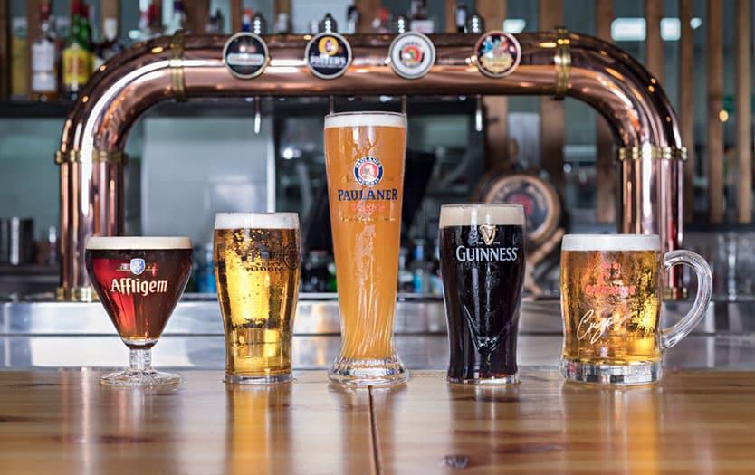 mr beers roquetas cervezas