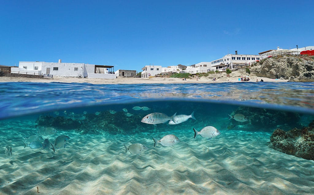 Experiencias Almería