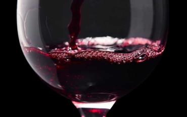 Guia iniciacion vinos