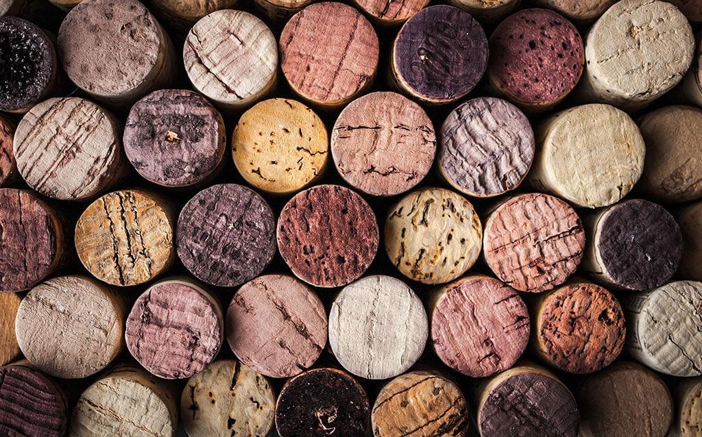 vinos principiantes