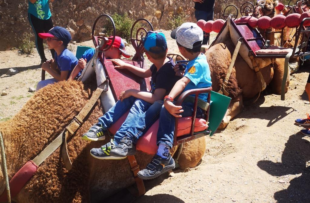 Camellos Almería